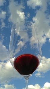 Wine Flying High